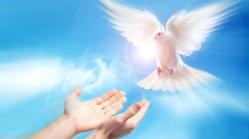 dopen-met-de-heilige-geest